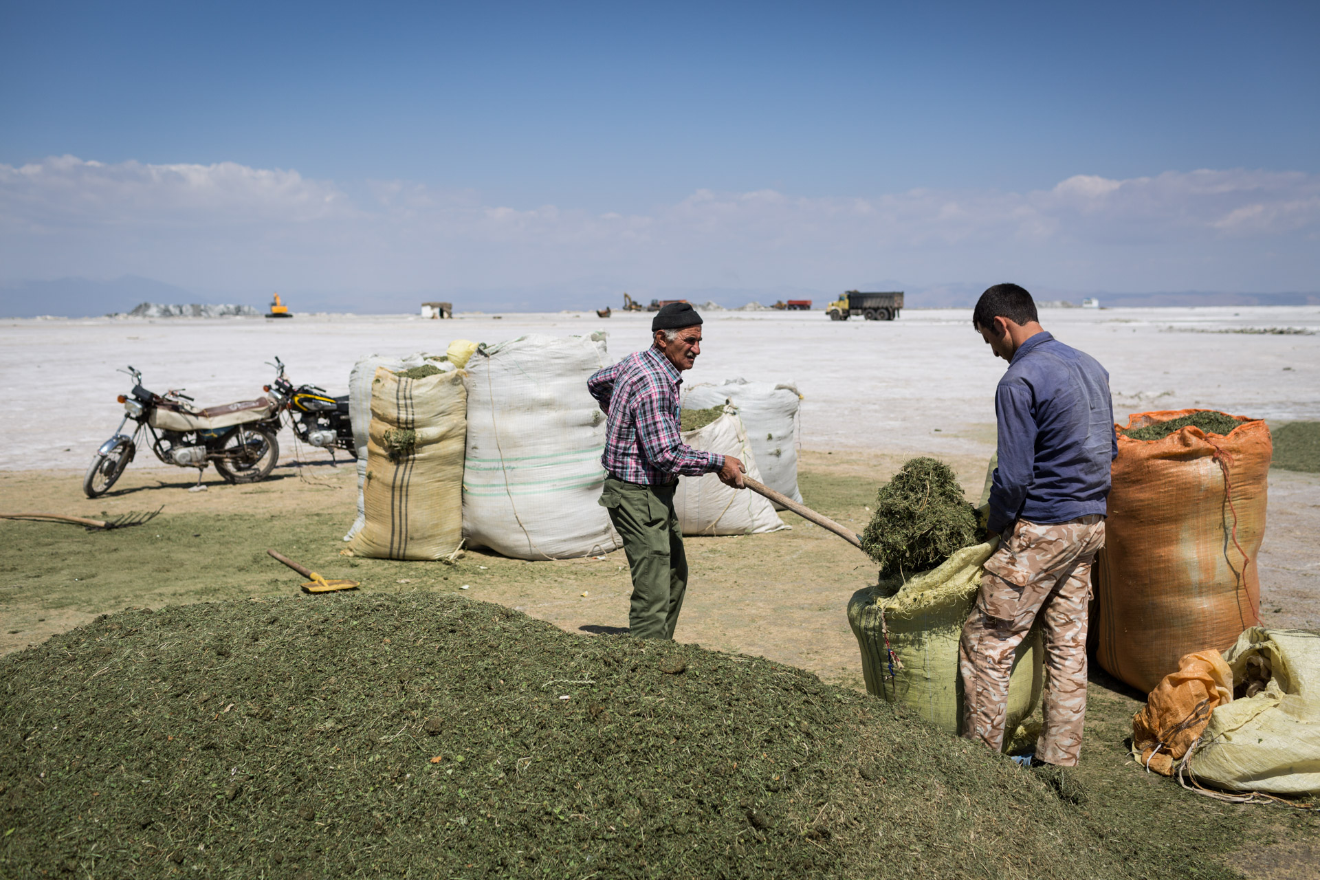 Two farmers collect dry hay from the salty ground where Lake Urmia used to be.